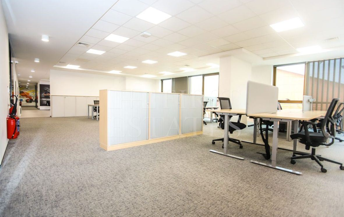 1245 m² office for rent